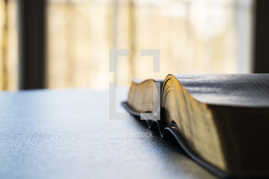 open Bible on a table in sunlight