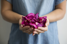 cupped hands holding rose petals