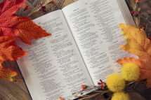 fall trimmings and an open Bible