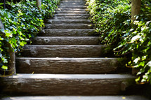 A long stairway of log steps lined with green ivy.