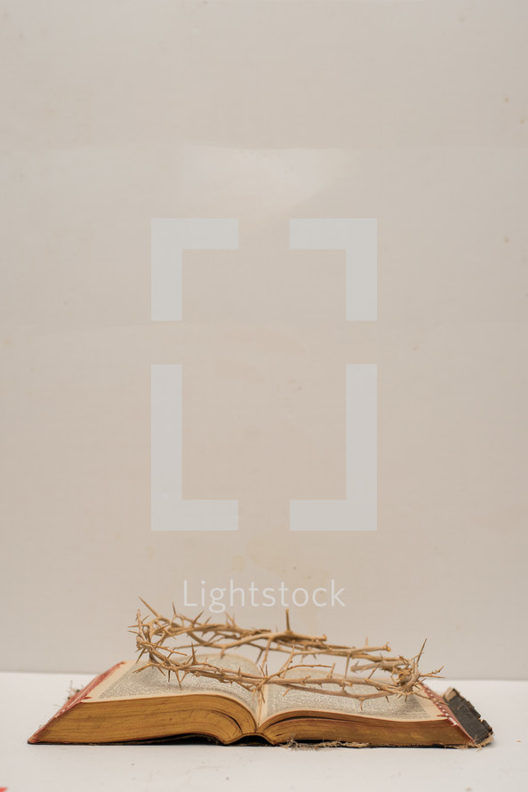 A crown of thorns laying on a Bible with a white background.