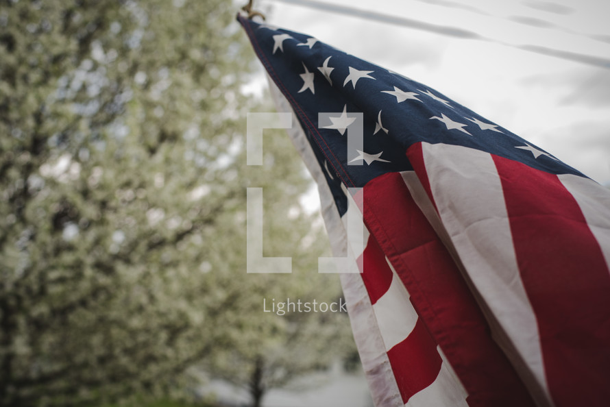 American flag on a flagpole and spring blossoms