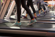 women walking on treadmills at the gym.