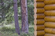 Log cabin near trees.