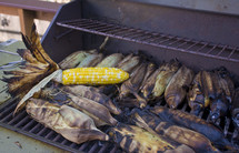 cooking corn husks on the grill