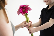 A boy gives his mother a bouquet of pink flowers.