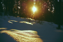 sunlight over snow on the ground