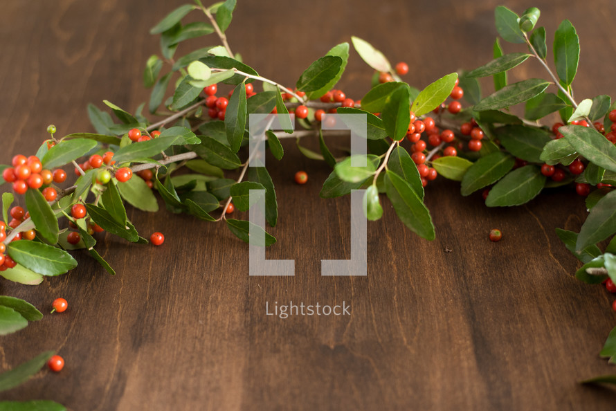 a wreath of holly on wood