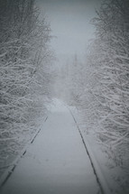 path covered in snow