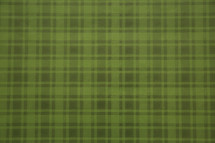 plaid green background.