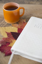 fall scene, leaves, fall, autumn, Bible, Holy Bible, coffee mug, hot tea