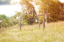 wood crosses and tall grasses on a hill