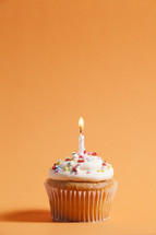 cupcake against an orange background