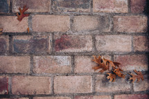 fall leaves and brick
