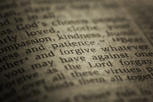 "the word ""forgive"" on the page of a Bible."