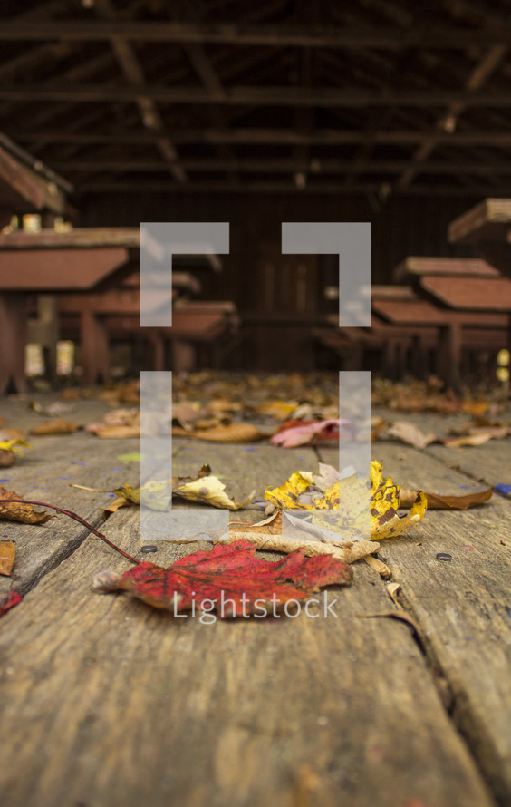 fall leaves on deck