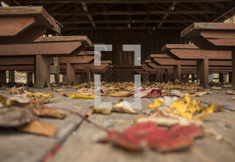 fall leaves on a deck