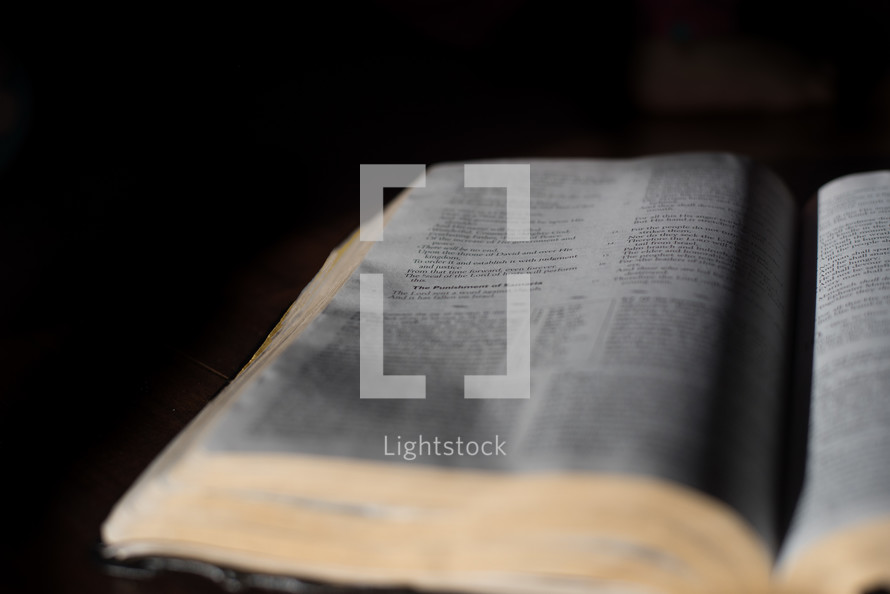 sunlight on an open Bible