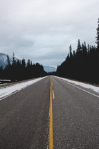 A highway leading through evergreen trees.