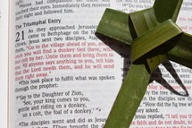 Palm Sunday scripture, Matthew 21: 1-11, The Triumphal Entry