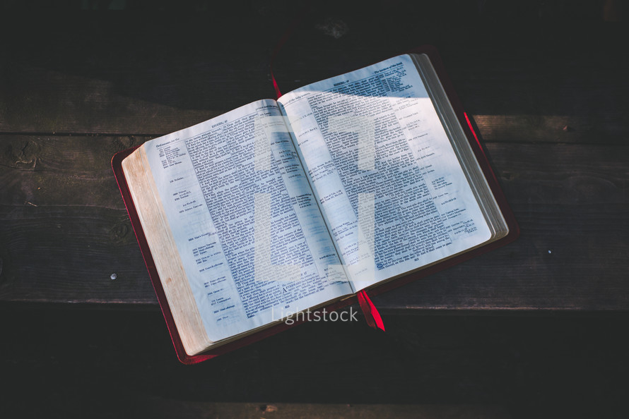 sunlight on the pages of an open Bible