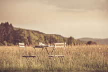 table and chair set in a field