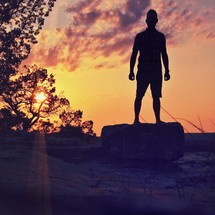 Silhouette of man standing on rock the sand in a tree-lined field at sunset.
