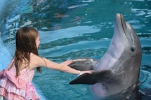a little girl dancing with a dolphin