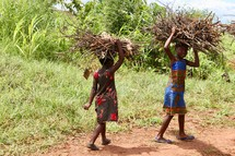 children carrying sticks over their heads