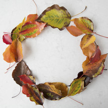 circle out of fall leaves