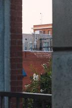 brick buildings and crape myrtles