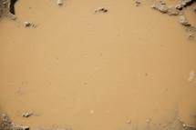 mud puddle background.