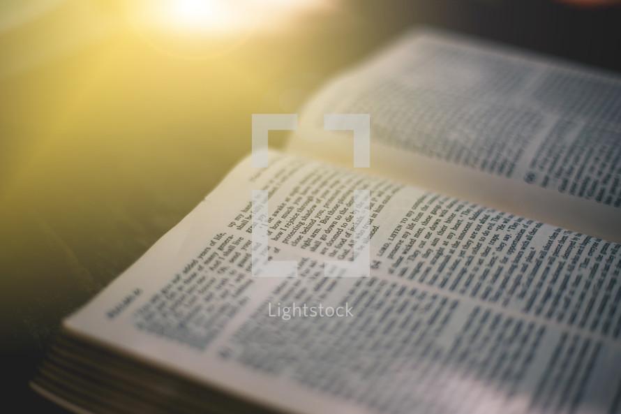 open Bible in the glow of sunlight