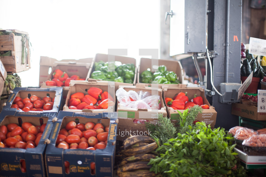 tomatoes and green peppers in boxes at a farmers market