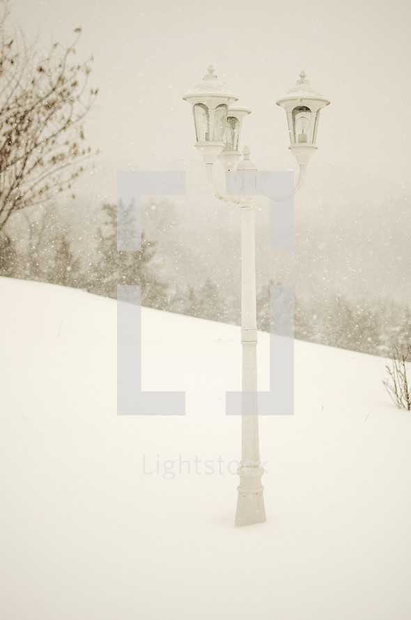 Lamppost in the snow.