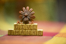 Give thanks and turkey decoration