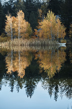 fall foliage reflecting on pond water