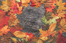 border of fall leaves on wood