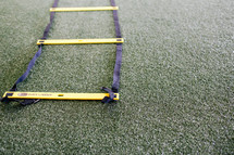 quick ladder trainer