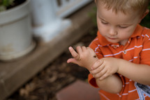 a toddler boy with a ladybug on his hand