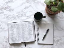 house plant, open Bible, pen, notebook, and coffee cup on a marble countertop