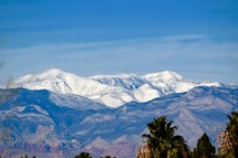 view of Snow capped mountains from the Las Vegas Valley and the contrast of palm trees