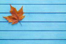 orange fall leaf on a blue wood background