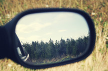 Trees in a rear view mirror.