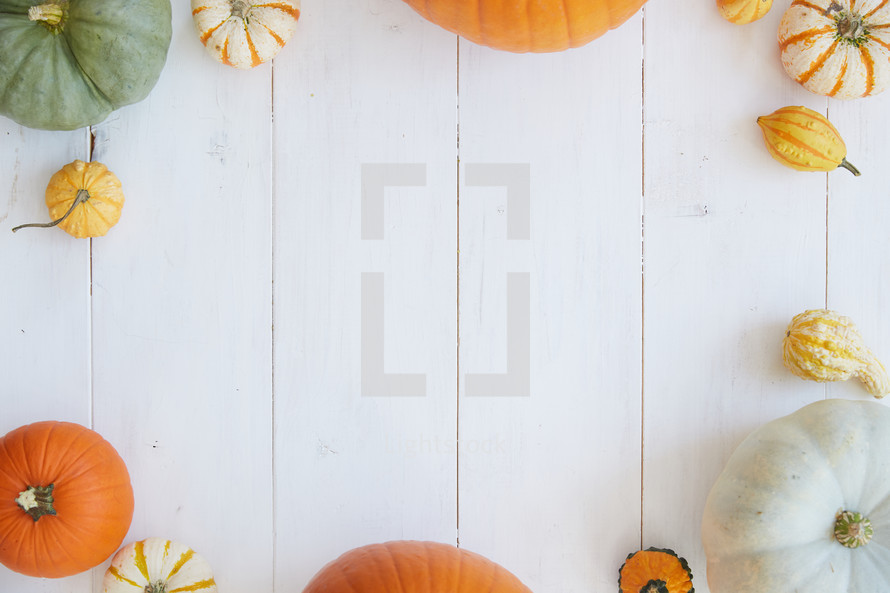 pumpkin and gourd border