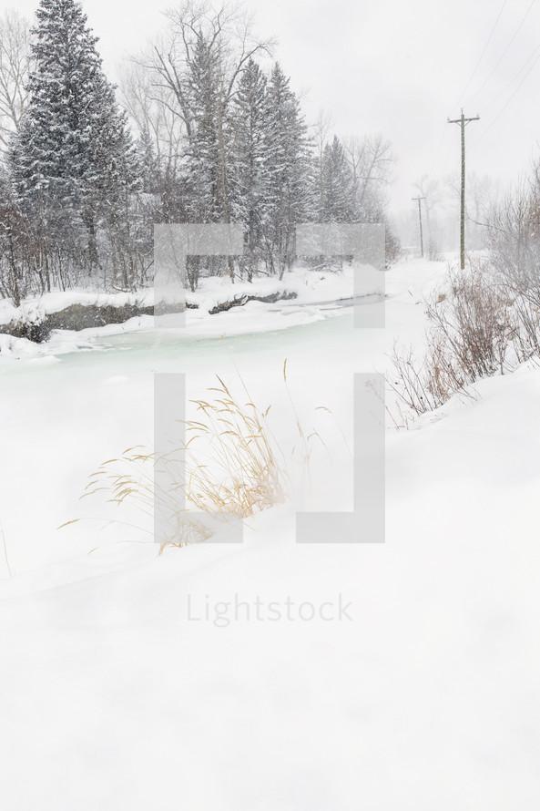 frozen winter stream