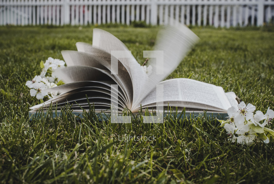turning pages of a Bible in the grass and spring blossoms