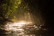 rays of sunlight shining onto a stream