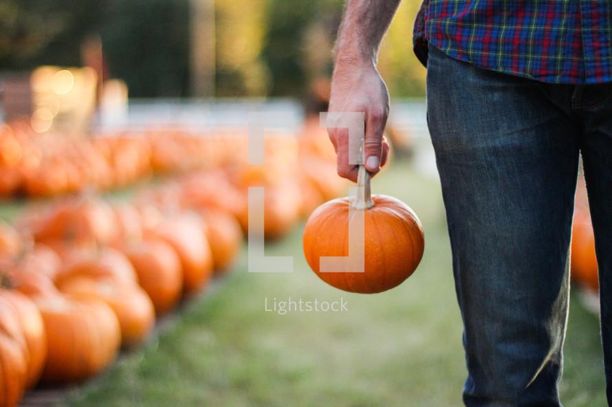 a man holding a pumpkin in a pumpkin patch