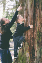 Mother helping her son climb a tree.